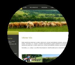 webdesign Dolnacko